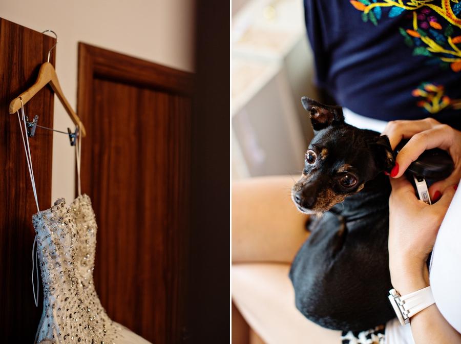 fotografie nunta Marius Chitu _D+A 004
